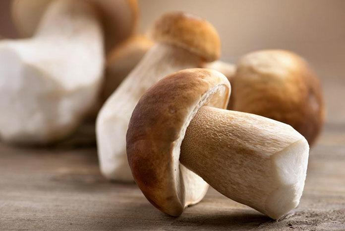 Suszenie grzybów w piekarniku