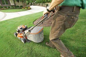 Jak wybrać kosiarki akumulatorowe do koszenia trawy?